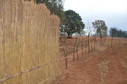 Mbambake, Dedza (50).JPG