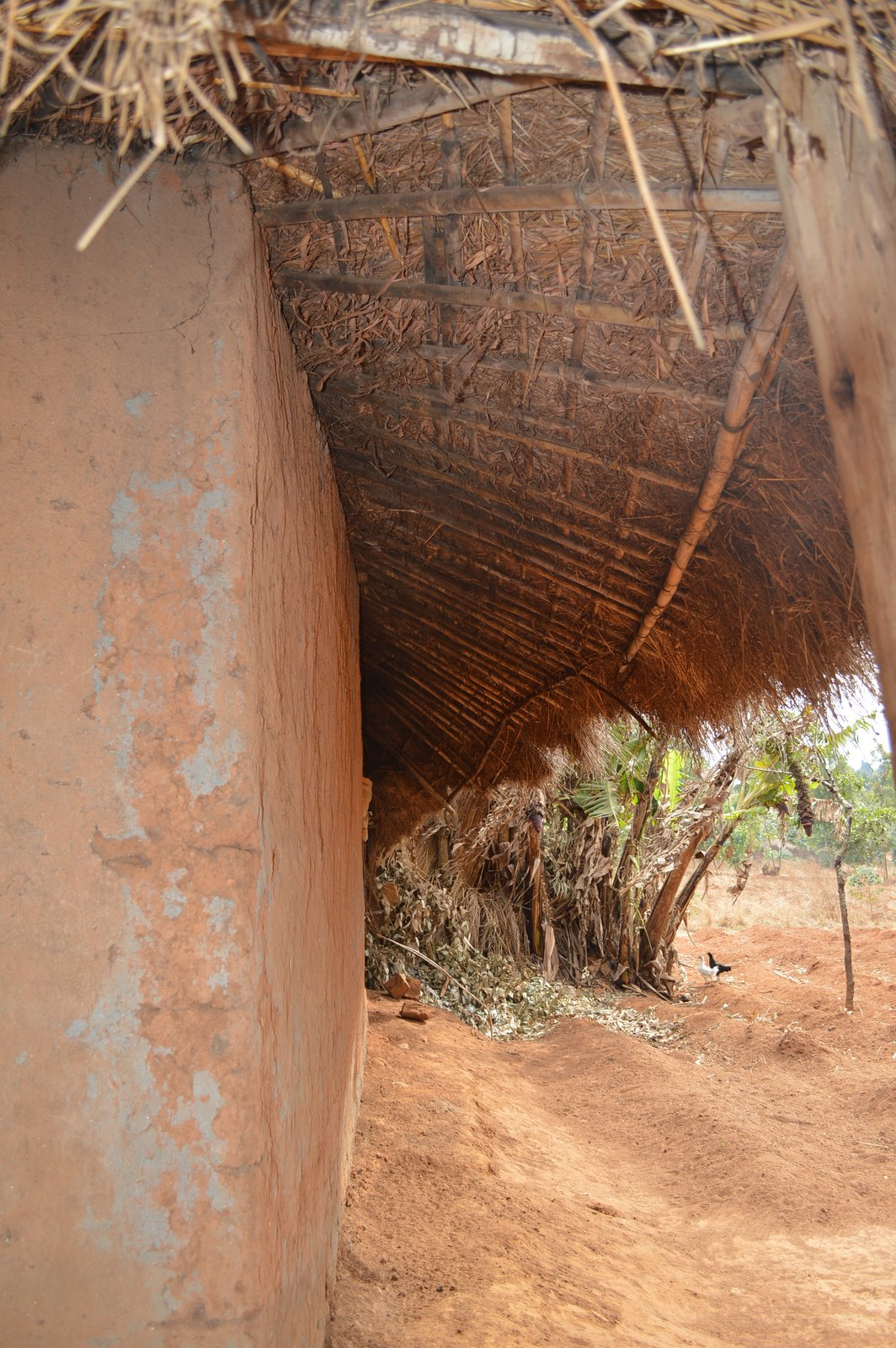 Mbambake, Dedza (47).JPG
