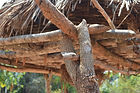 malawi architecture, Close up of a pigeon coop. The base where the basket rests on is connected to the vertical poles. Khombedza village malawi