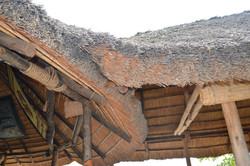 Gecko Lodge, Mangochi (5).JPG