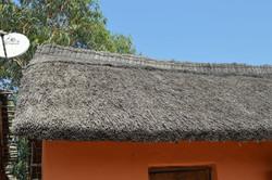 Gecko Lodge, Mangochi (2).JPG