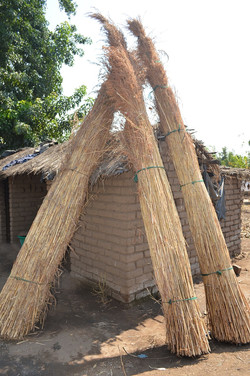 Kambewa, Mulanje (15).JPG