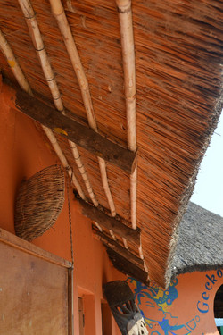 Gecko Lodge, Mangochi (3).JPG