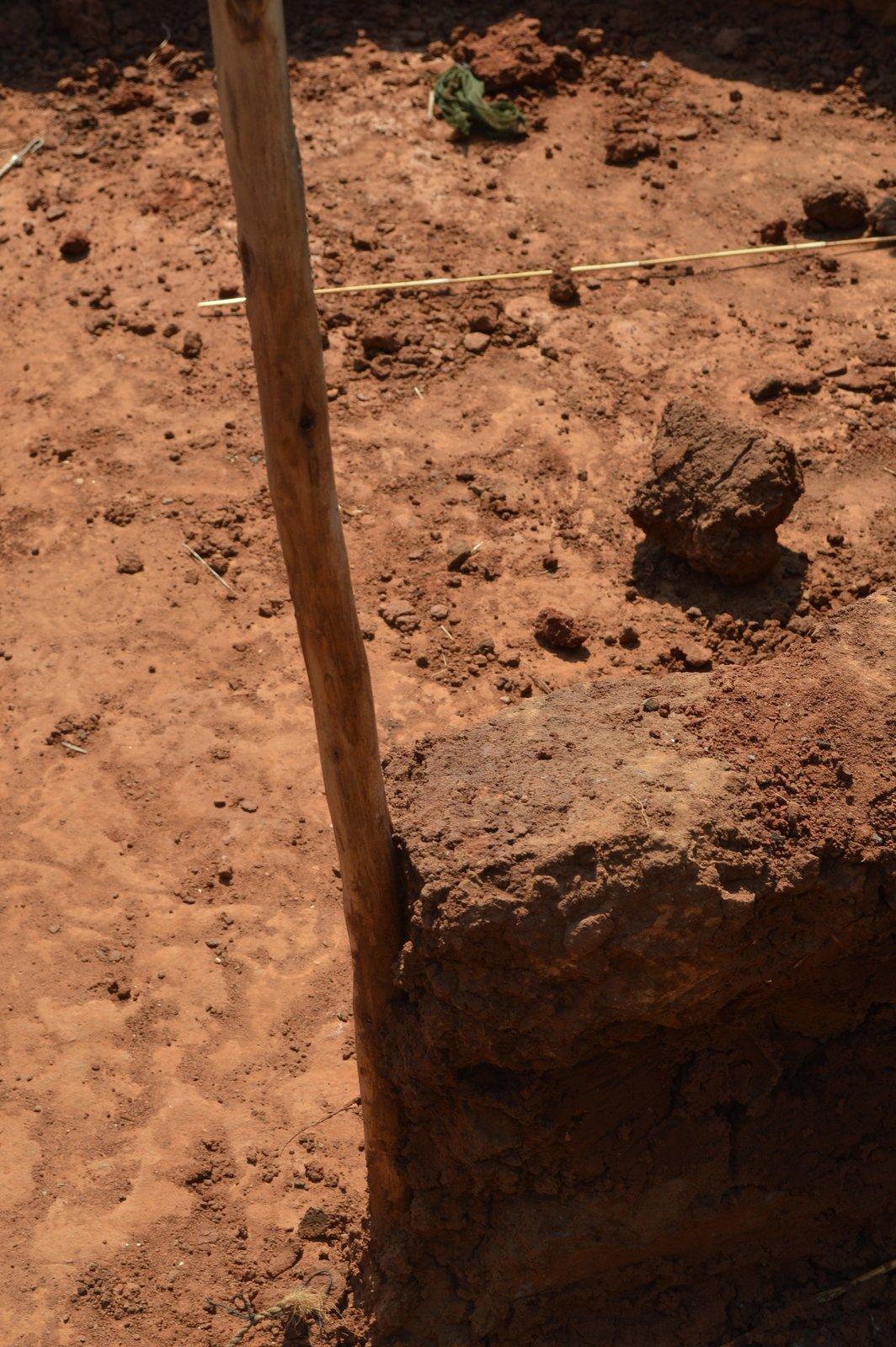 Nsanga, Kasungu (61).JPG