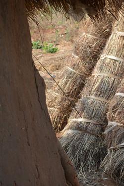 Mtambe, Nkhota Kota (16).JPG