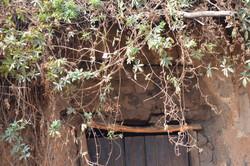 Nsangu, Salima (9).JPG