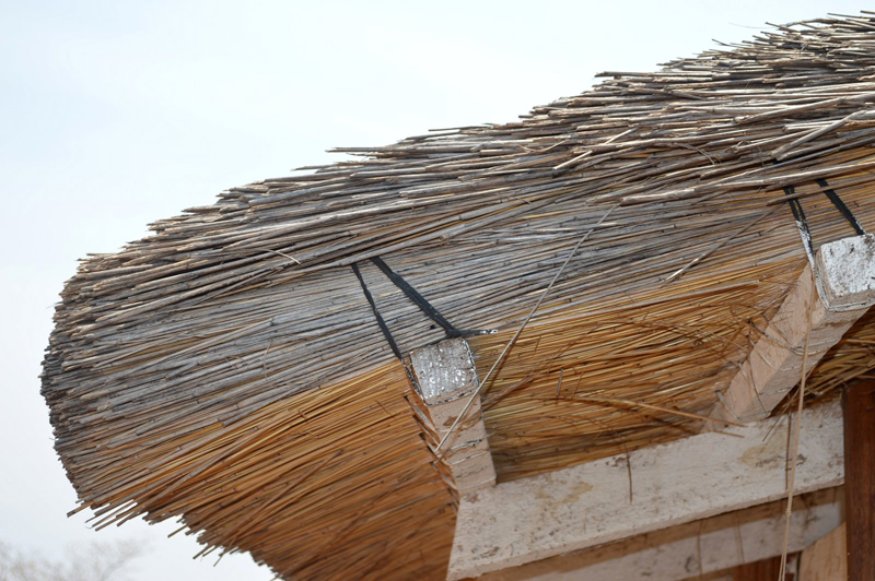 Malawi Sams Village , roof detail (submitted by the Landirani Trust).JPG