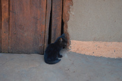 Mwantothera, Nzimba (53).JPG