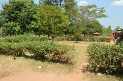 Pasani, Nkhata Bay (22).JPG