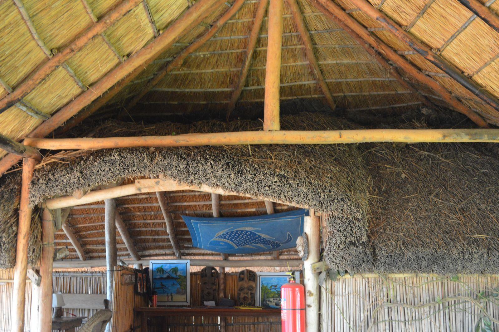 Gecko Lodge, Mangochi (28).JPG
