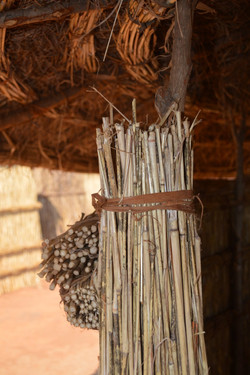 Nqhondowe, Kasungu (5).JPG