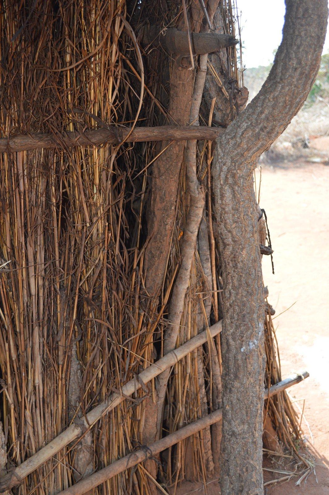 Chilambo, Nzimba (16).JPG