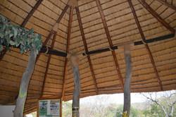 Majete game park, Chikwawa (7).JPG
