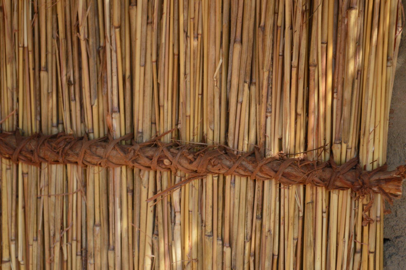 Safi, Kasungu (12).JPG