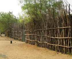 Ethiopia fence constructed of wood poles (submitted by Abby Morris).jpg