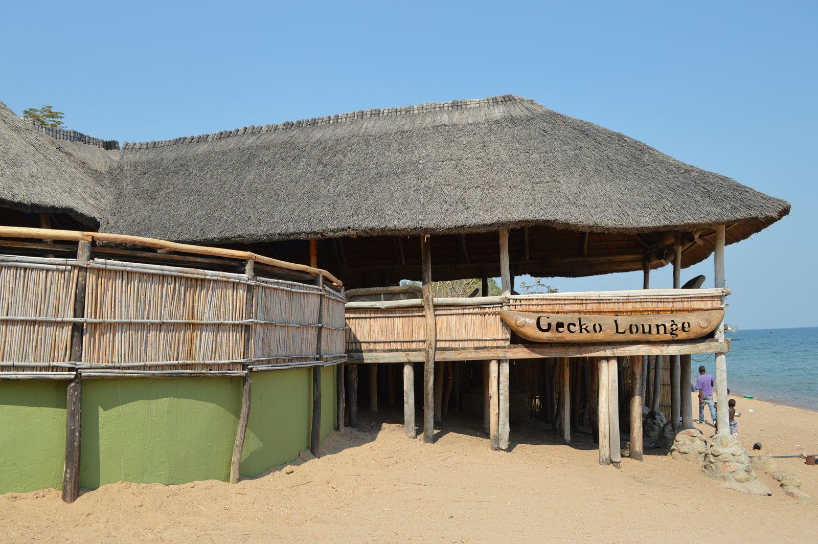 Gecko Lodge, Mangochi (52).JPG
