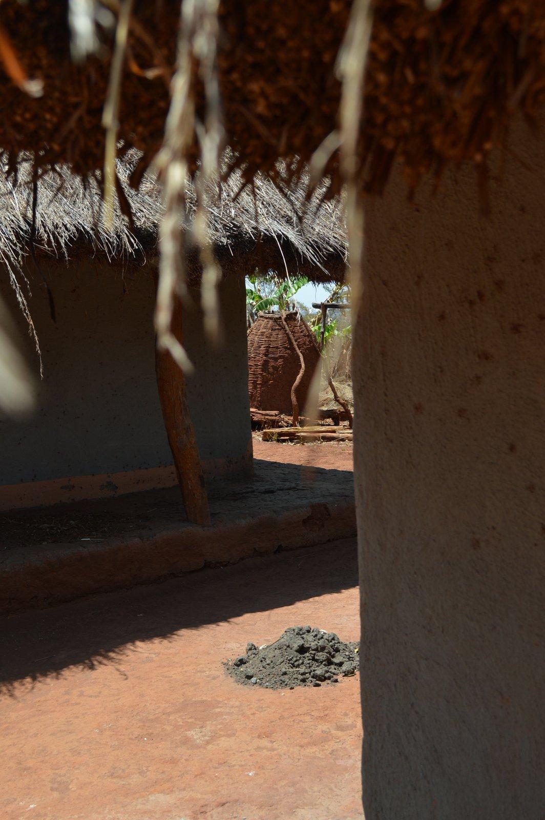 Mwantothera, Nzimba (40).JPG