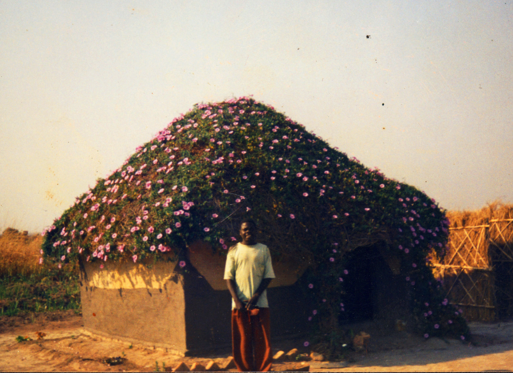 Zambia Man standing in front of his home wit a roof covered with flowering plant
