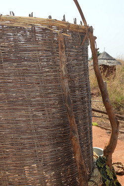 Nsanga, Kasungu (53).JPG