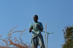 Salima, Nchingi (7).JPG
