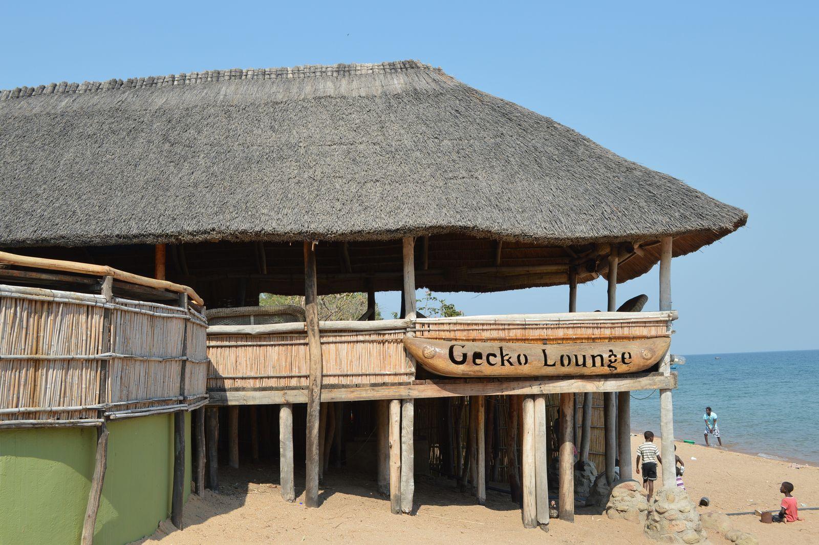 Gecko Lodge, Mangochi (49).JPG