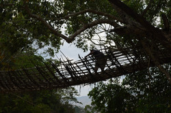 Kandewe bridge Rumphi North (20).JPG