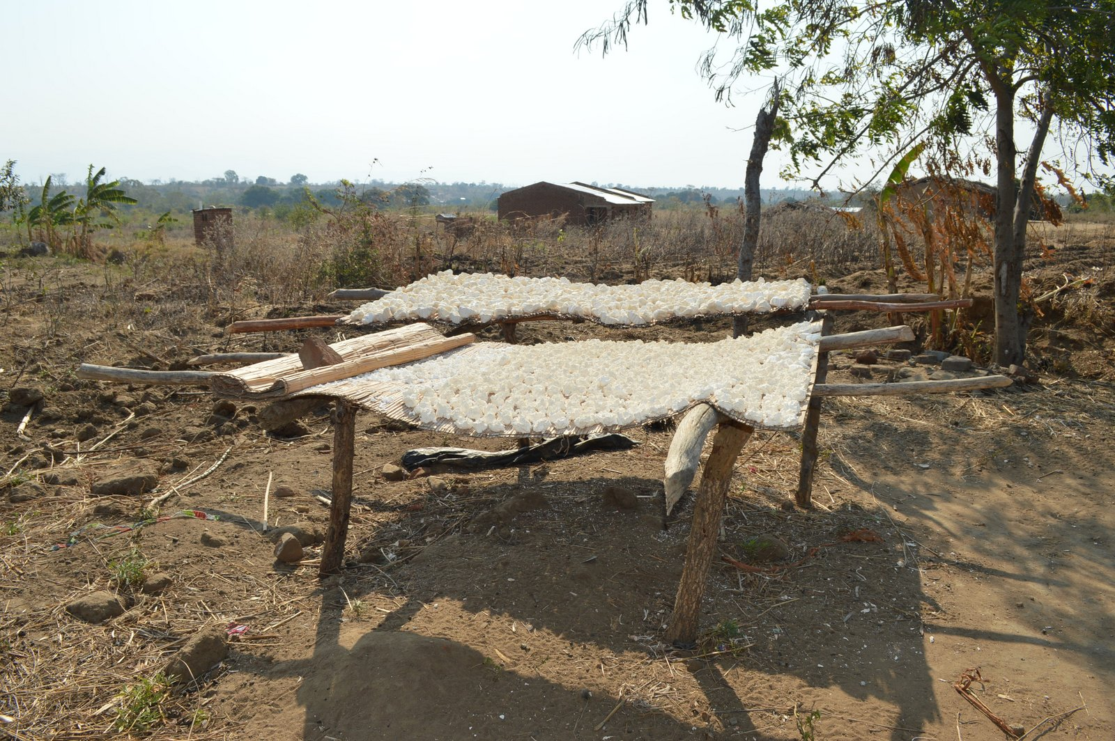 Chimwendo, Karonga (12).JPG