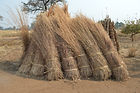 Thatch being stored in Nzimba village Malawi.  Will be applied right before the rains come in October, malawi architecture
