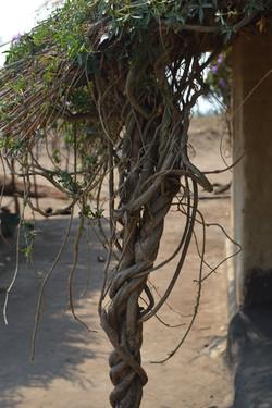 Nsangu, Salima (19).JPG