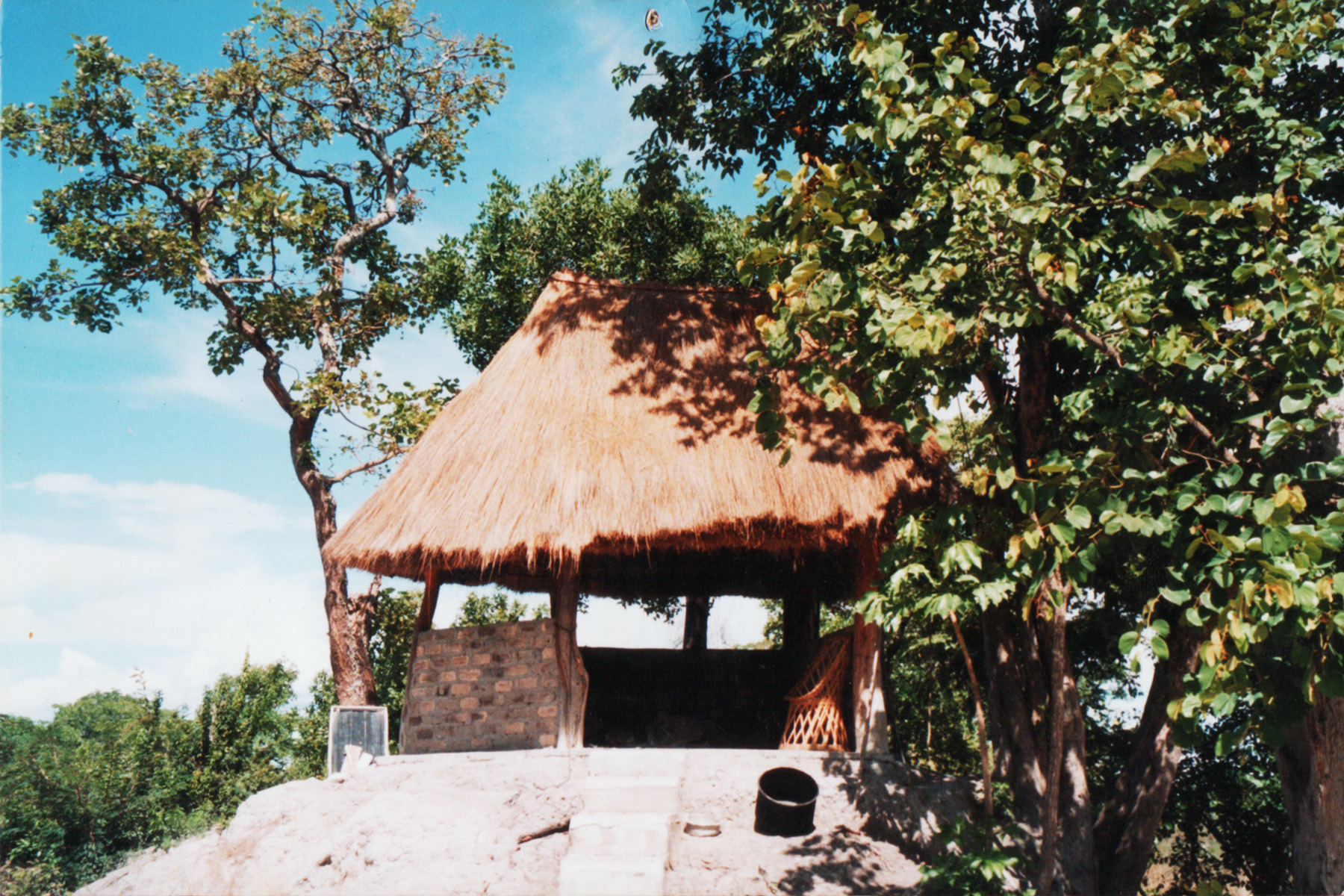 Zambia social insaka on top of a termite mound.jpg