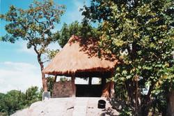 Zambia social insaka on top of a termite mound.jpg