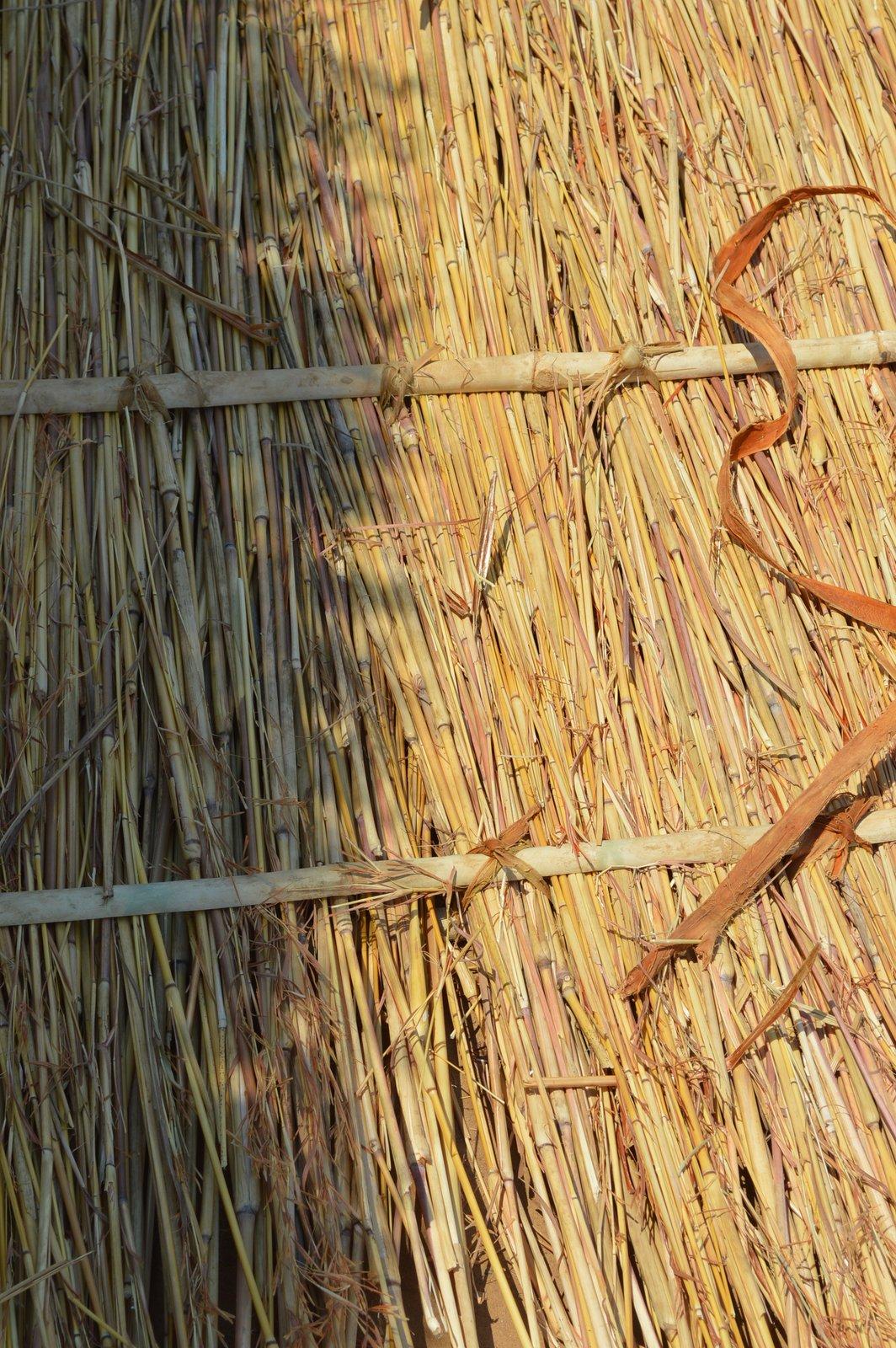 Nyemba, Kasungu (10).JPG