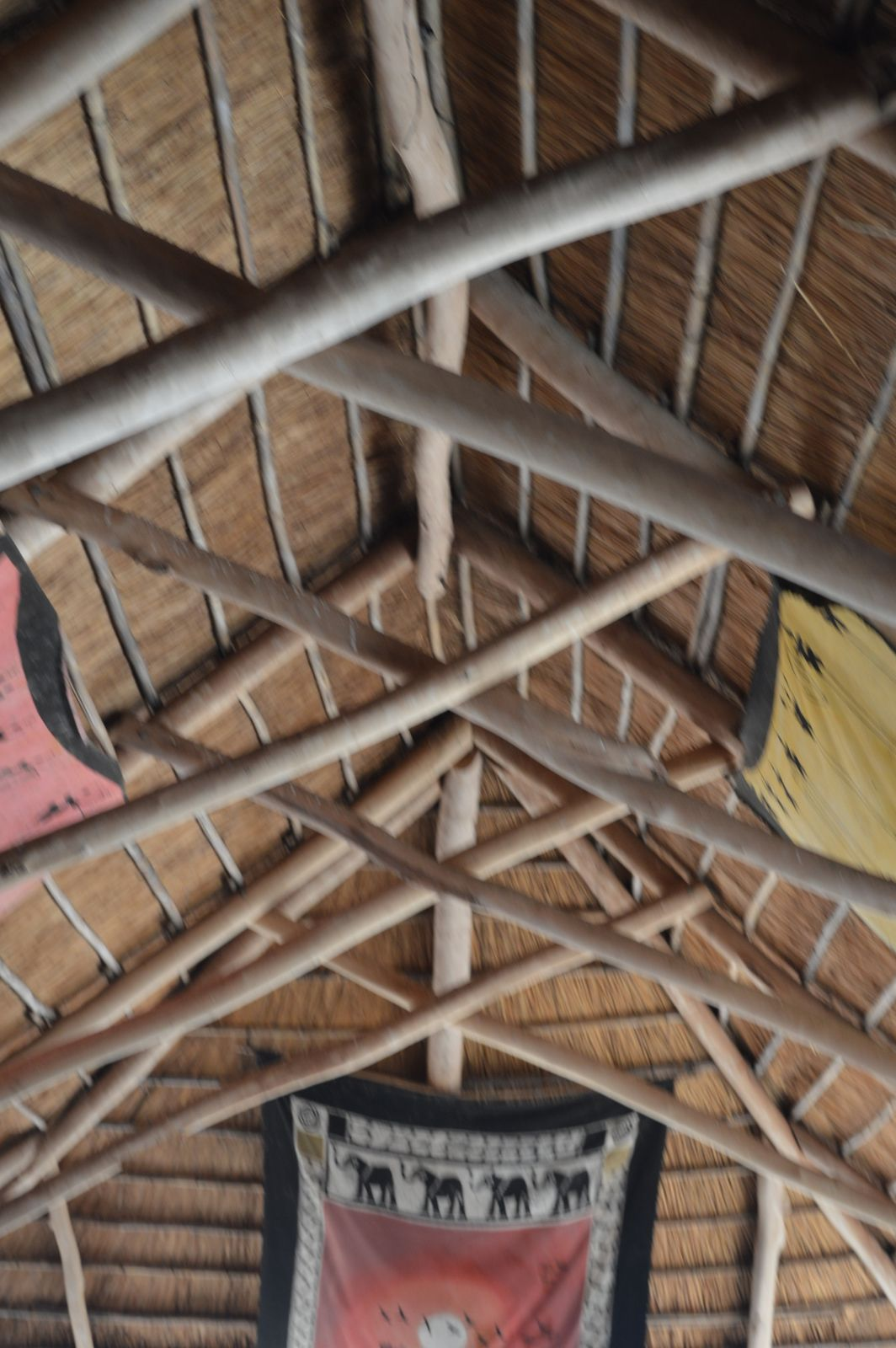 Gecko Lodge, Mangochi (12).JPG