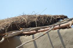 Nsulila, Kasungu (17).JPG