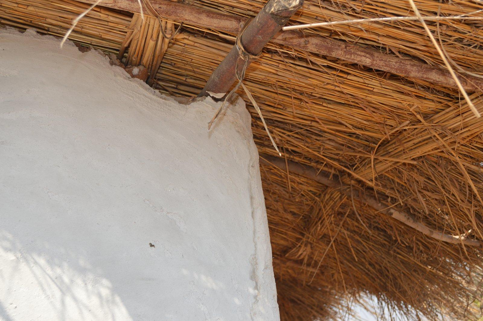 Safi, Kasungu (10).JPG
