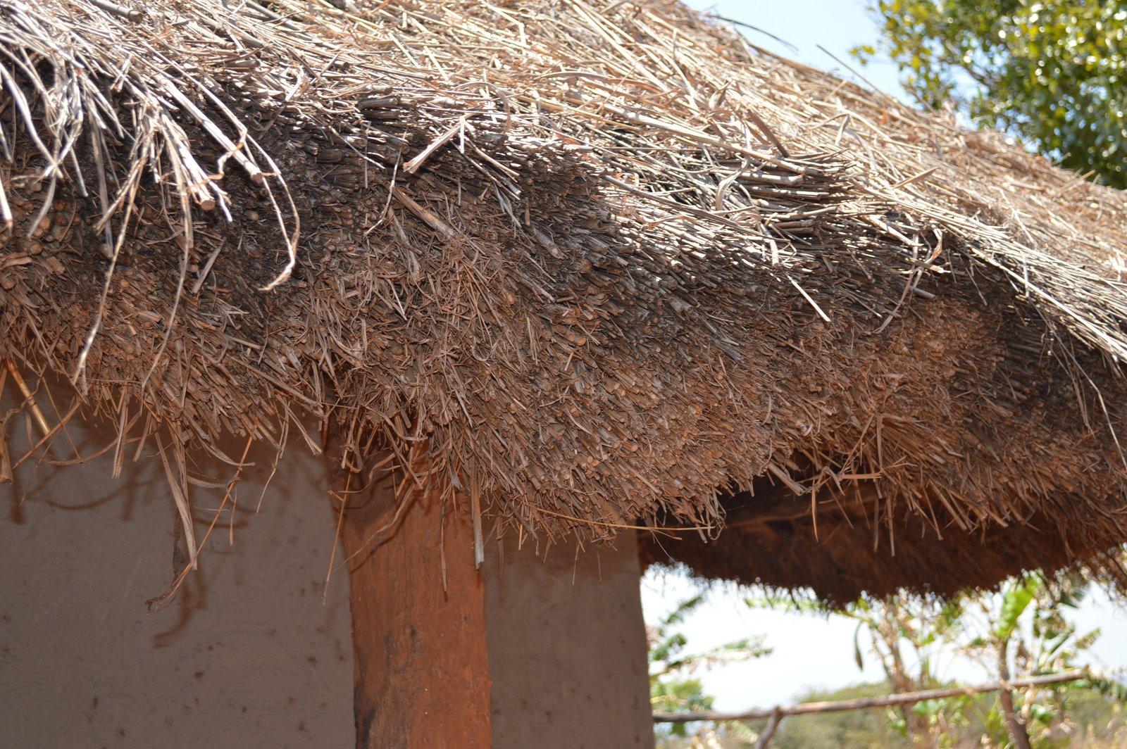 Mwantothera, Nzimba (19).JPG
