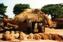 Zambia thatch stored in bundles being applied to roof.jpg
