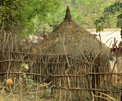 Ethiopia mud and thatch home behind a wood pole fence (submitted by Abby Morrris