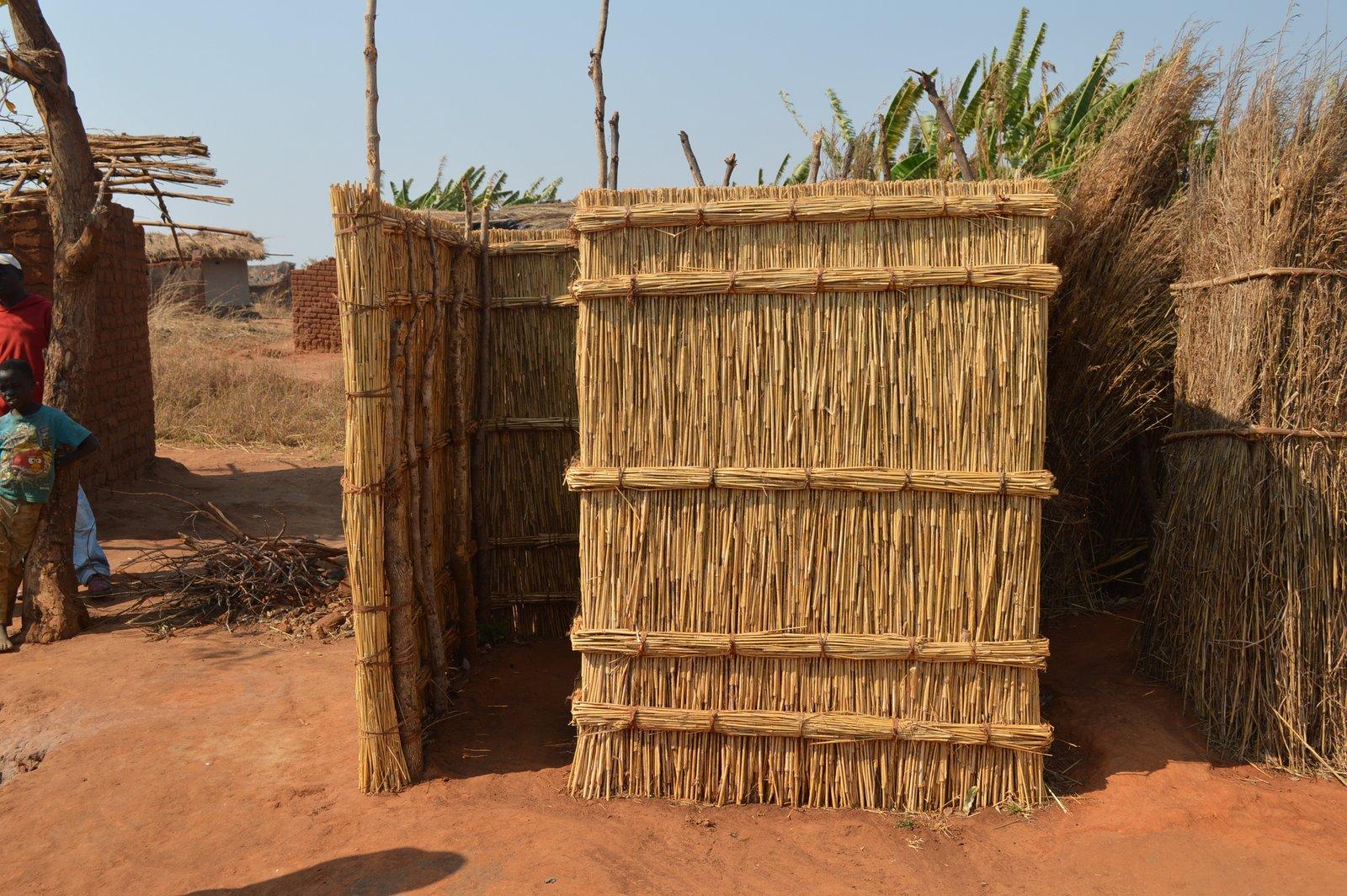 Nqhondowe, Kasungu (13).JPG