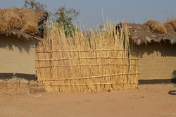 Bushiri, Salima (11).JPG