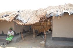 Nsulila, Kasungu (31).JPG