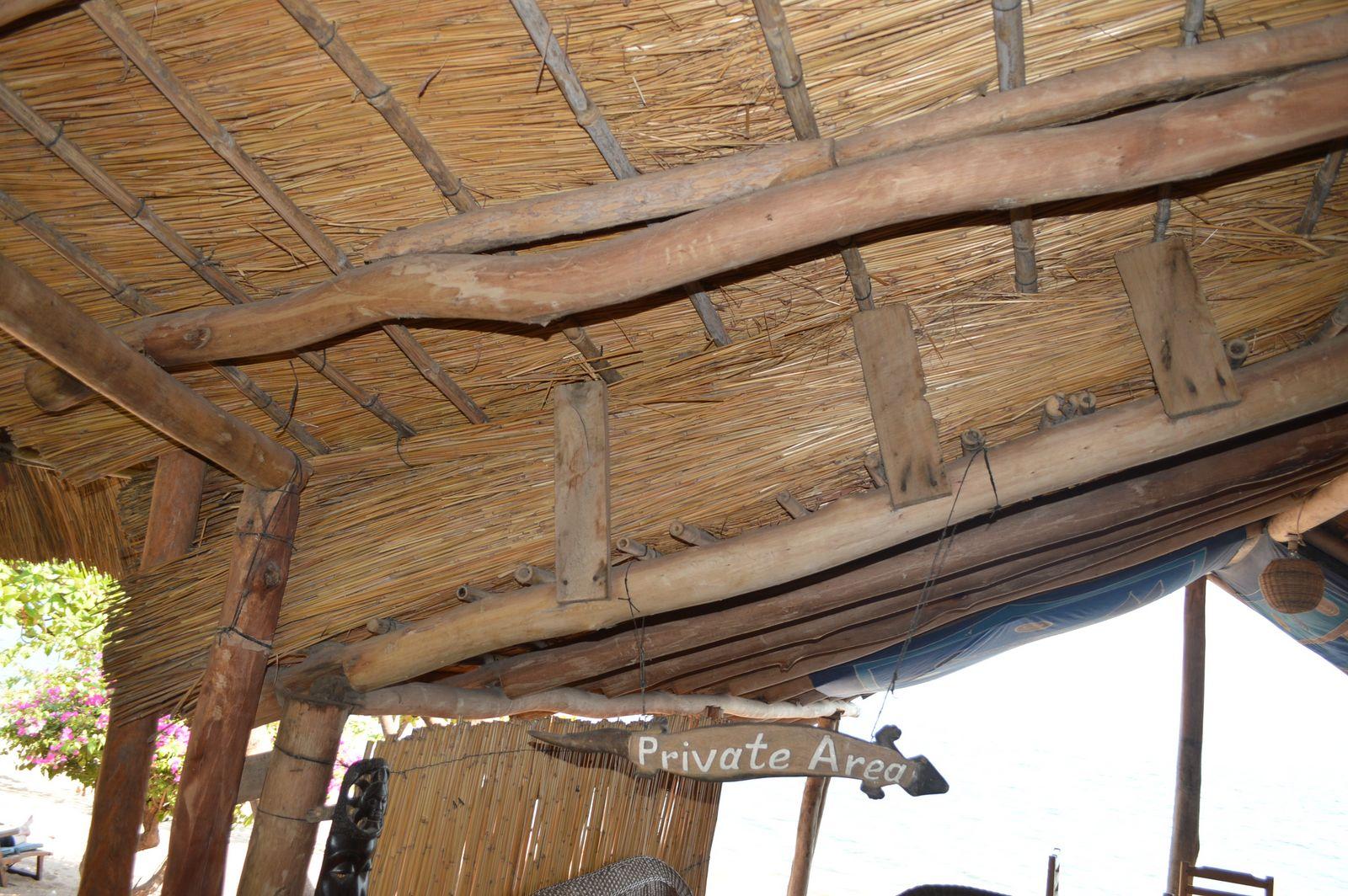 Gecko Lodge, Mangochi (33).JPG