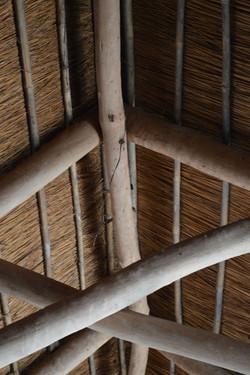 Gecko Lodge, Mangochi (15).JPG