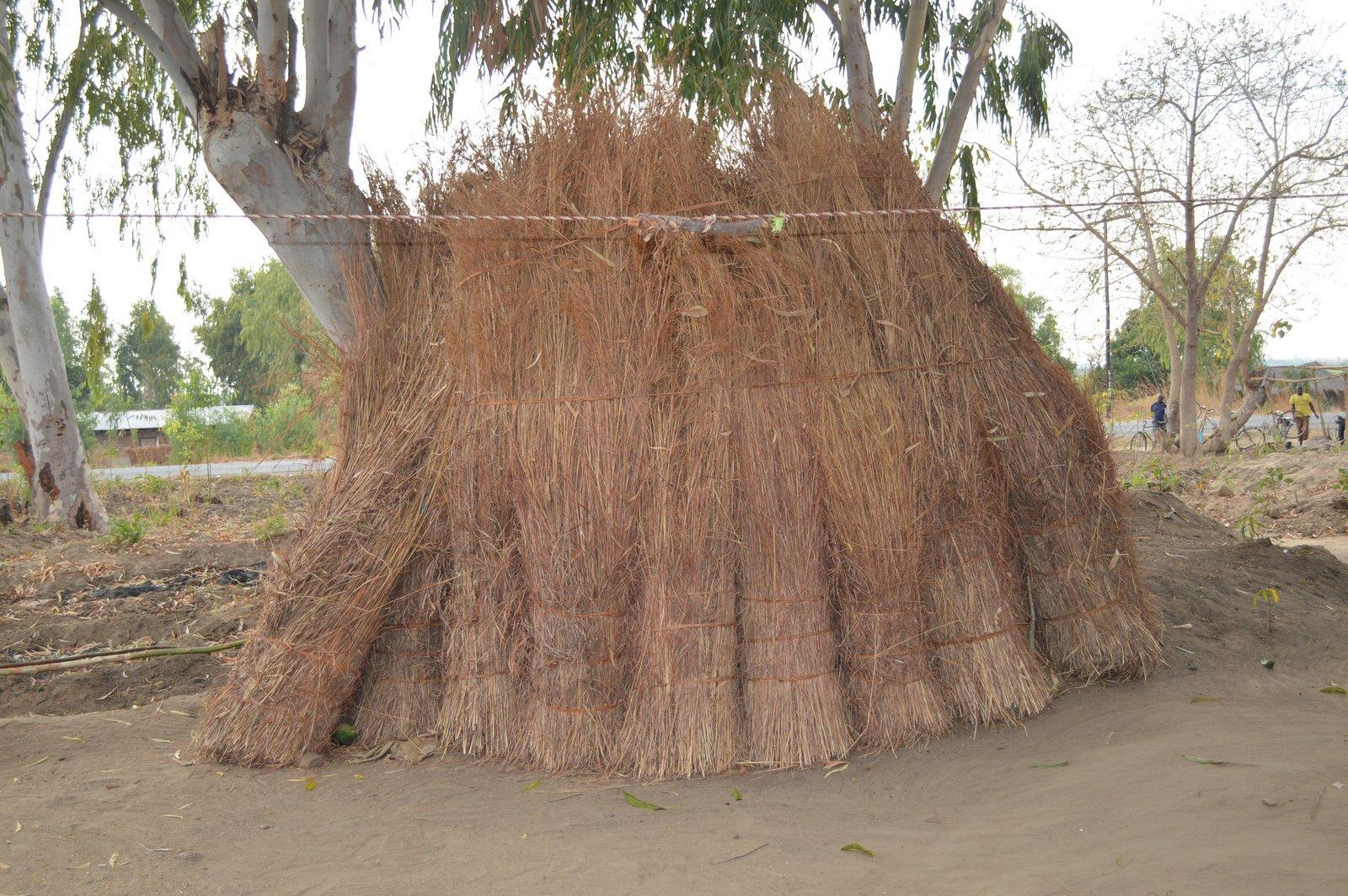 Chikasima, Nkhata Bay (27).JPG