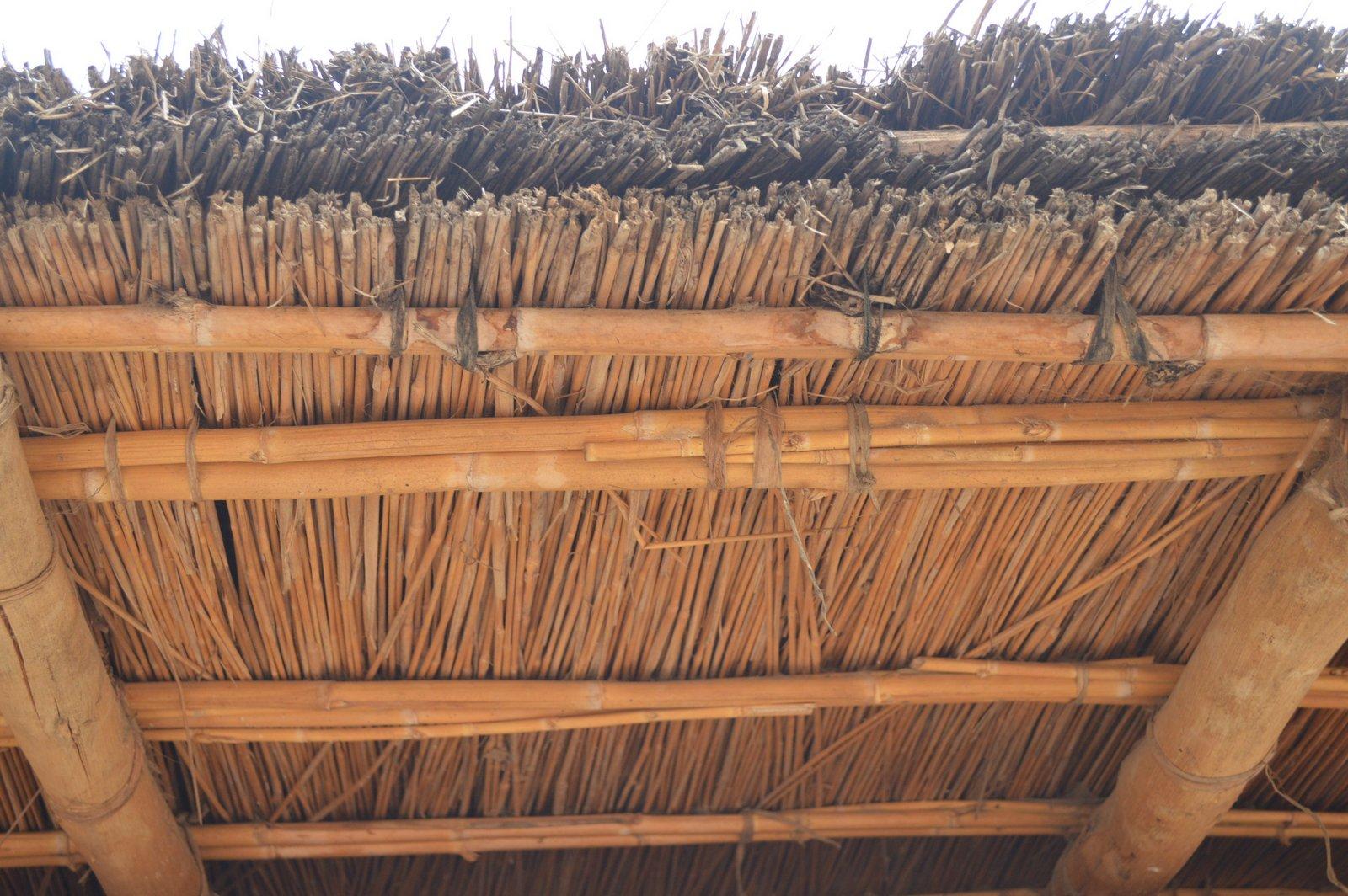 Bisani, Nkhata Bay (11).JPG