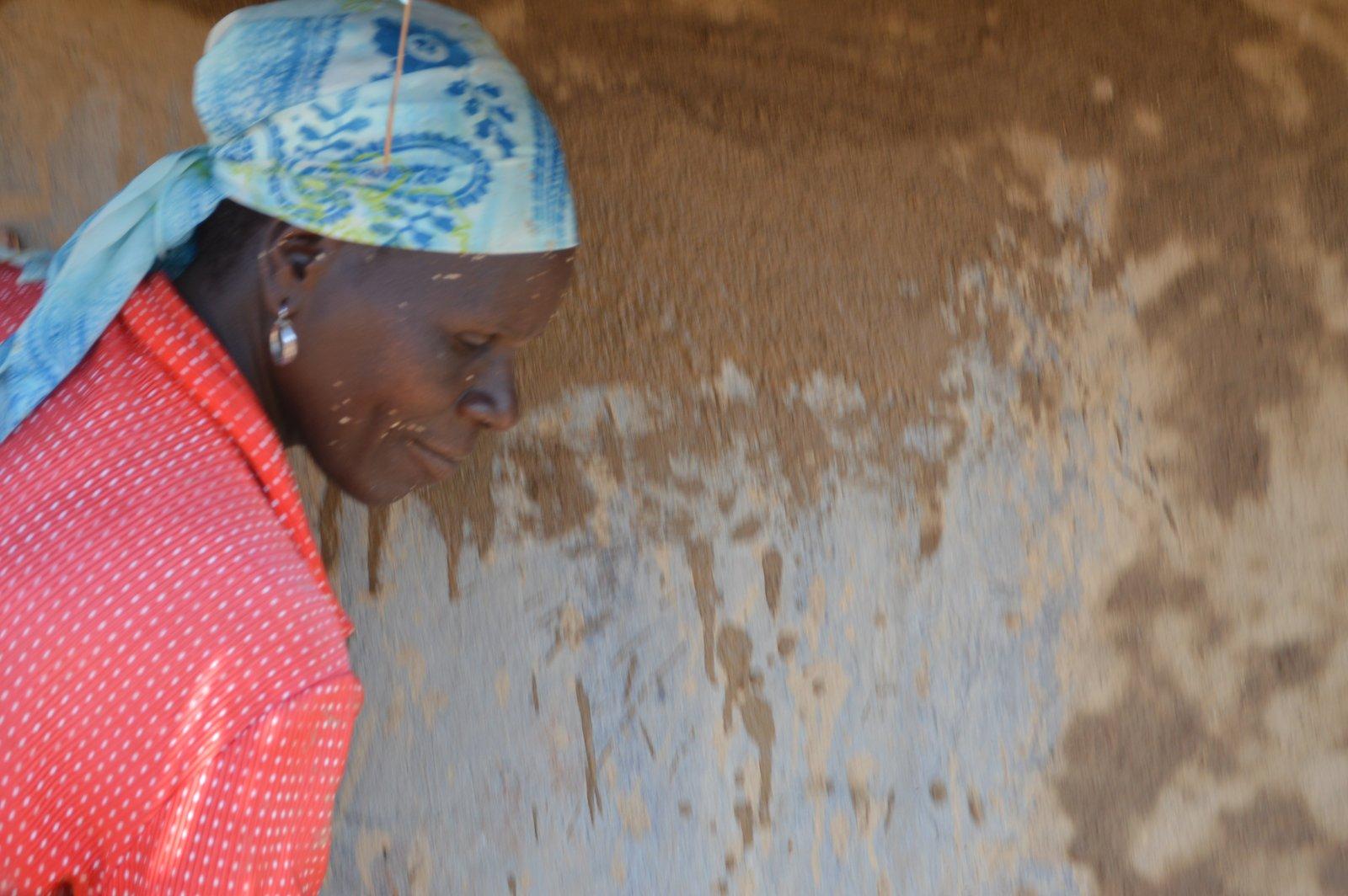Chisi, Nzimba (7).JPG