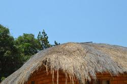 Kachopatsonga, Nkhata Bay (16).JPG