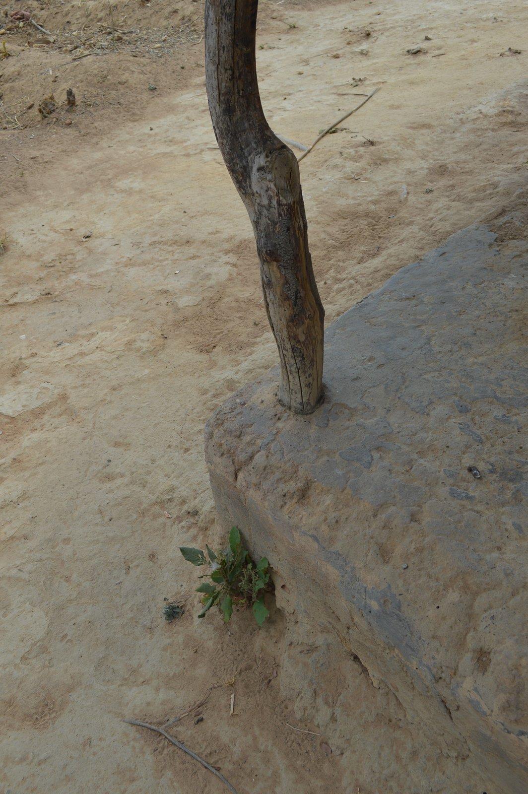 Chakhutupa, Chitipa (12).JPG