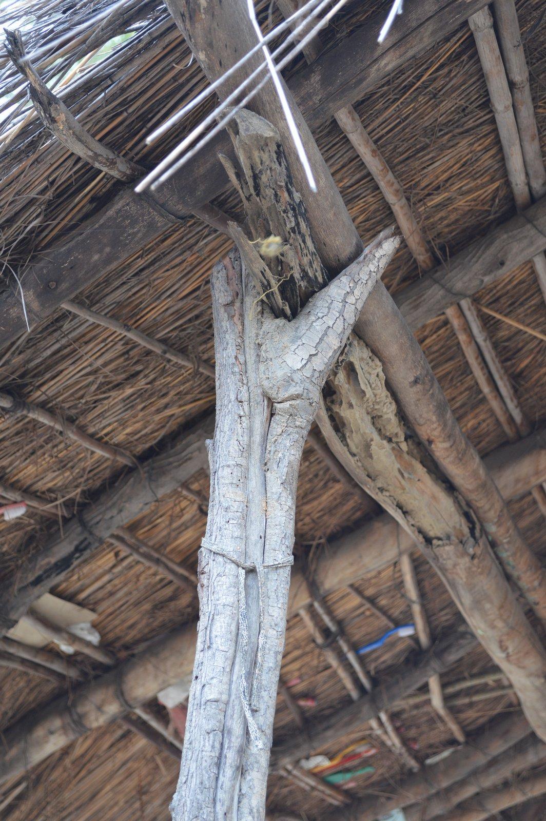 Choveka, Nkhata Bay (8).JPG