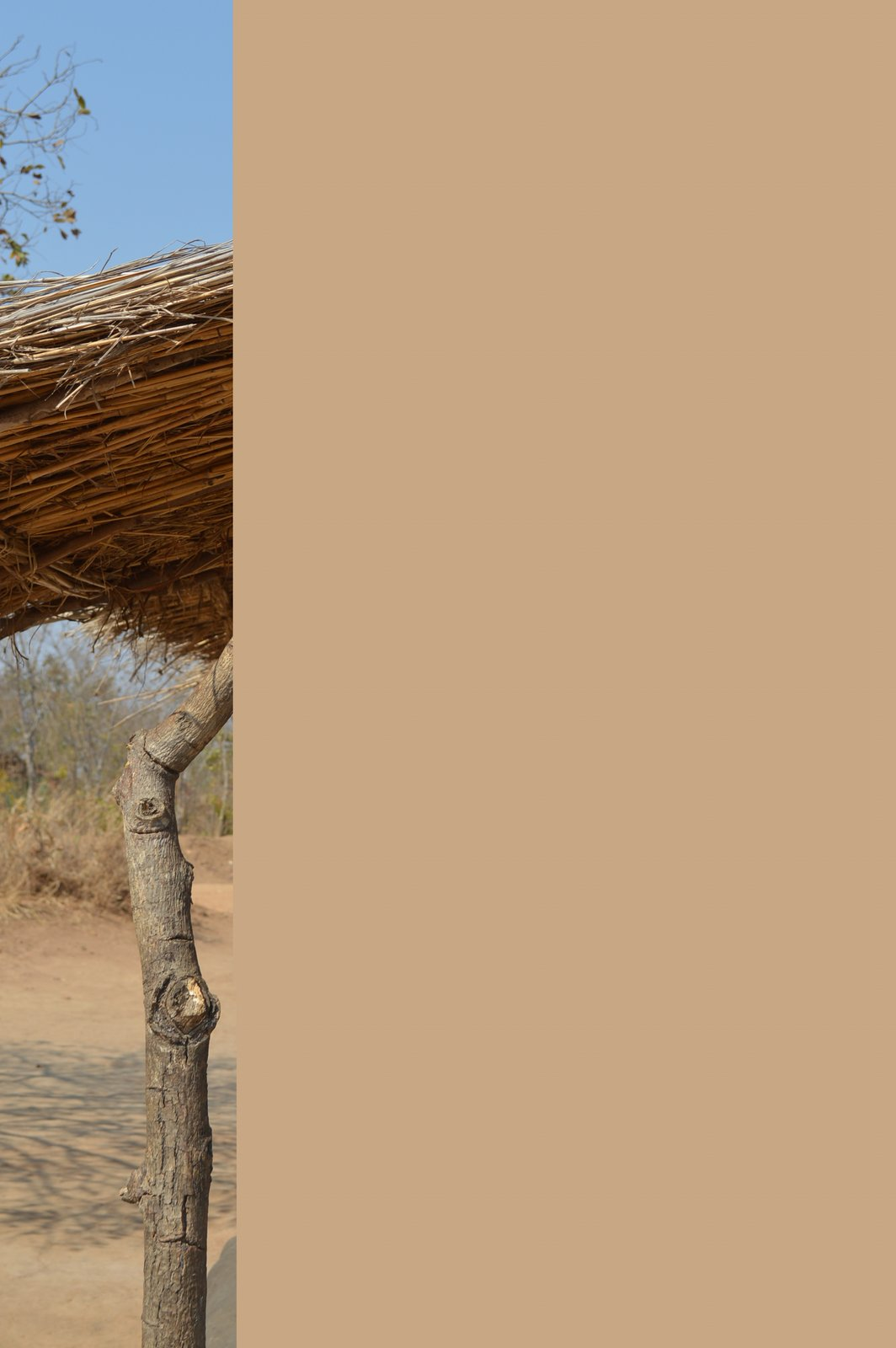 Safi, Kasungu (5).JPG